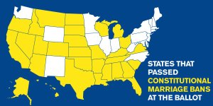States that have voted to ban gay marriage.
